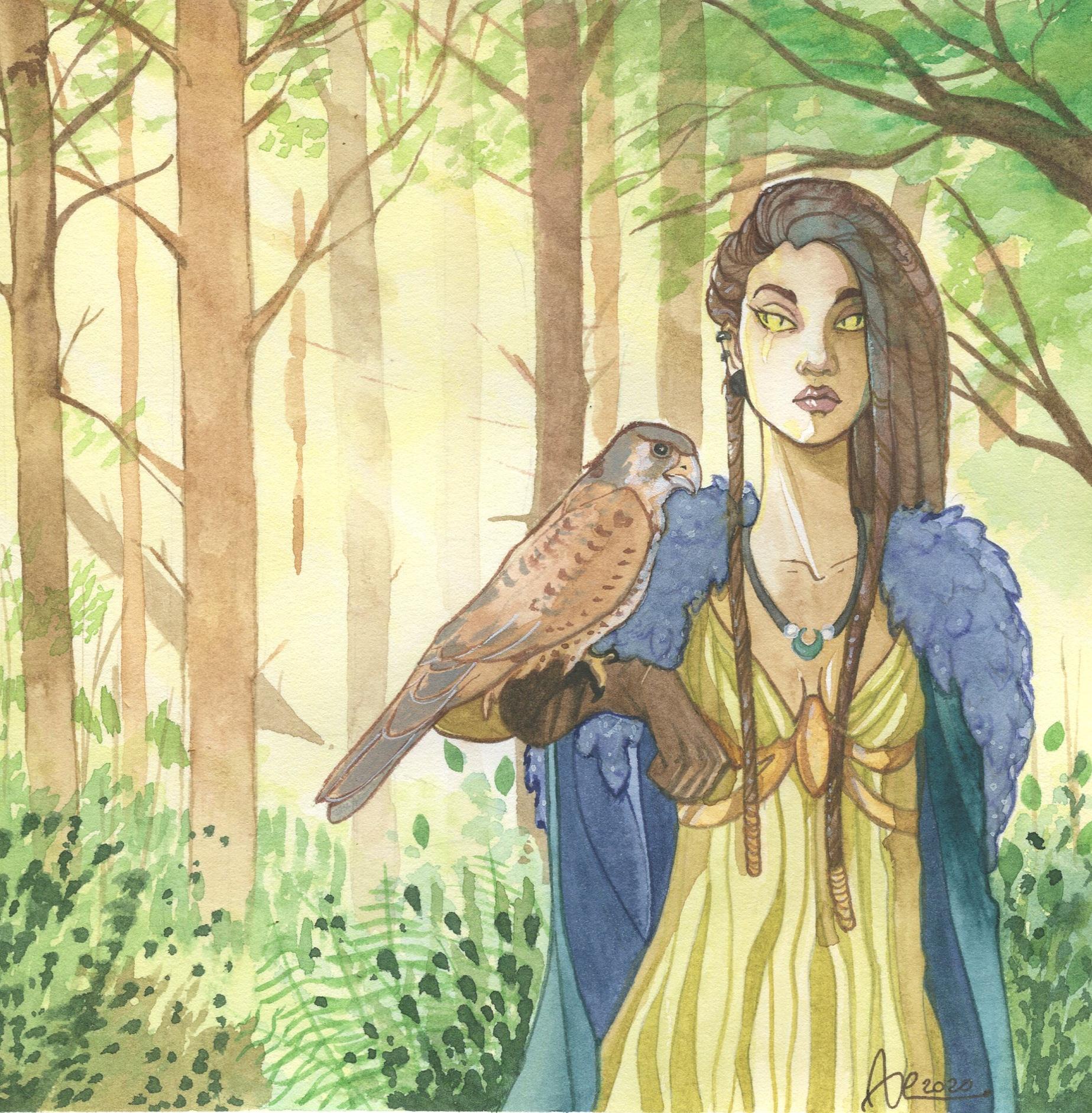 Sentinelle - femme et faucon dans la forêt