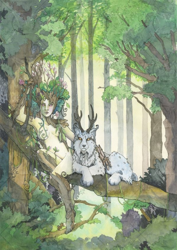 Dryade + familier lynx