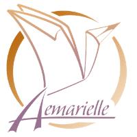 Logo Aemarielle Artiste