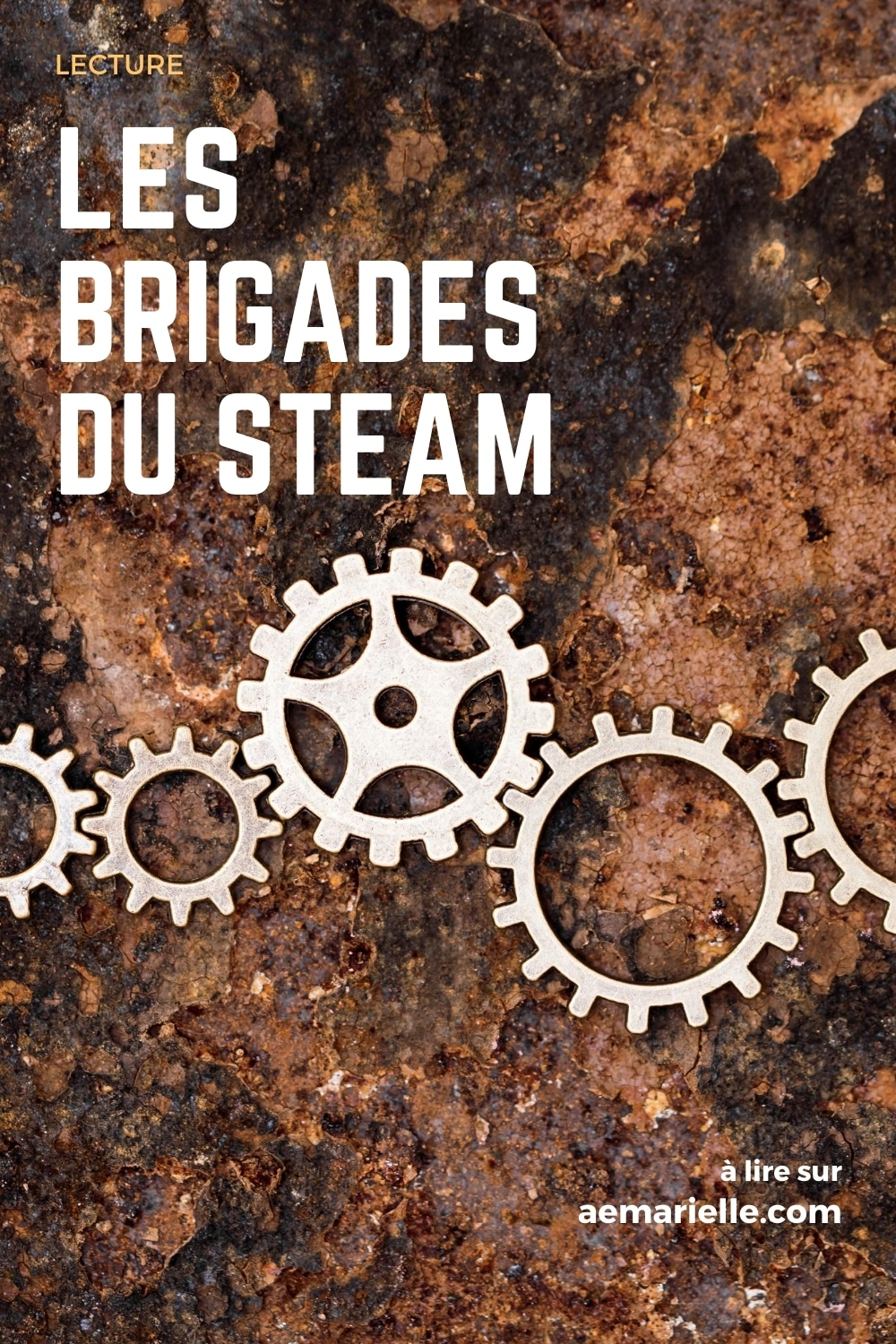 Les Brigades du Steam | épingle Pinterest 1