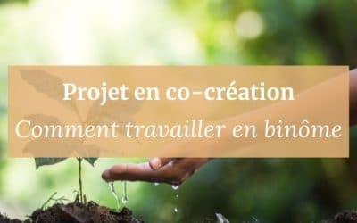 Projet en co-création | Comment travailler en binôme